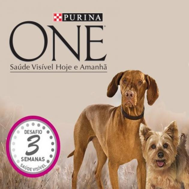 Oferta Purina One
